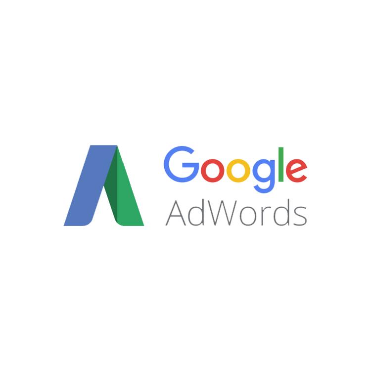 posicionamiento SEM Gestion de Campañas en Google Adwords