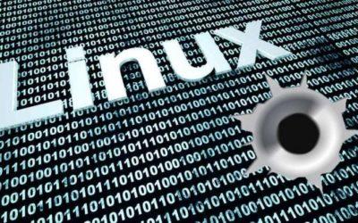 Vulnerabilidad en SUDO. Sistemas Unix y Linux