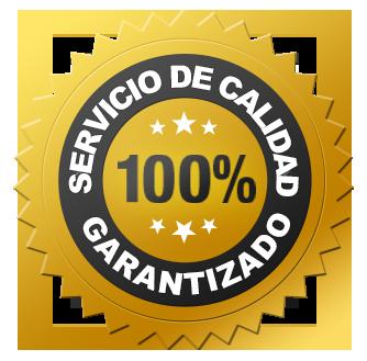 garantia permanente y mantenimiento incluido 2